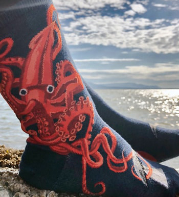 Squid socks by ModSocks with whale worn on the beach.