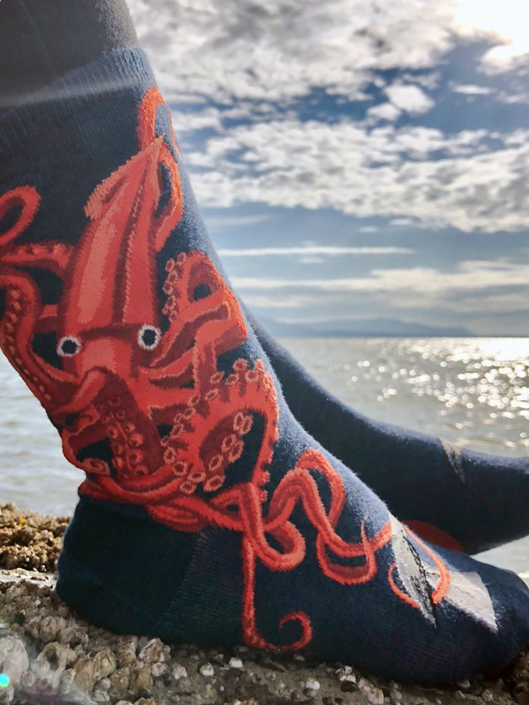Squid socks by ModSocks with a giant squid and whale socks near the ocean.
